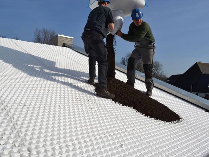 Optigrün-Dachbegrünung
