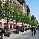 Neubepflanzte Einkaufsstraße