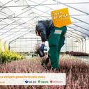 Kampagne Gartenbau