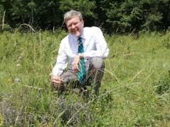 Zurück zur Natur - Industriefläche wird wieder grün