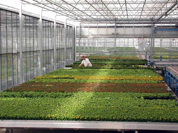Gartenbaubetrieb