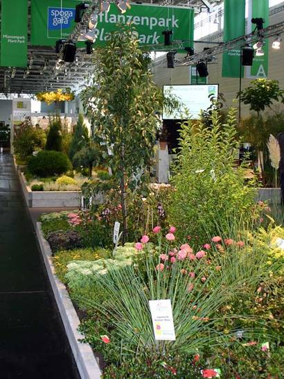 Plantregio Produkte
