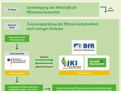Klöckner für verbesserten europaweiten Bienenschutz