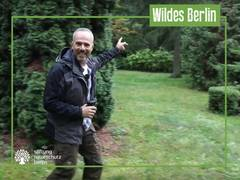 7. Folge der Videoserie «Wildes Berlin» jetzt online: Friedhof Pankow
