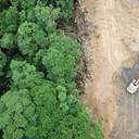 Bundesumweltministerium unterstützt entwaldungsfreie Lieferketten für Agrarrohstoffe
