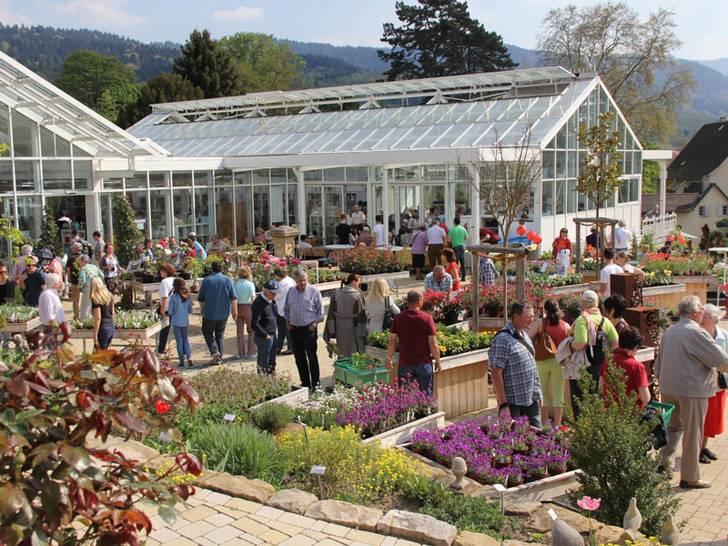 Frühlingsfest und Workshops