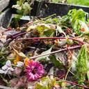 Bundesregierung minimiert Plastikanteil im Bioabfall
