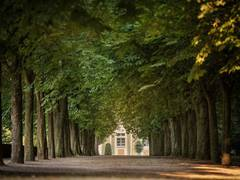 Garten von Schloss Bruchsal
