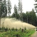 Waldstrategien 2030 beinhalten Bodenschutzkalkung