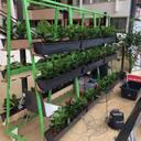 Ideen der Plantarium