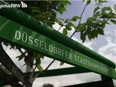 """""""Zukunftsbäume"""" spenden in Düsseldorf Schatten und Kühlung"""