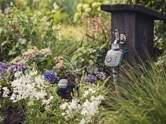 Gartenbewässerung wird mit Wetterdaten jetzt noch smarter