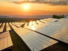 Bundesumweltministerium fördert innovative Agro-Photovoltaik