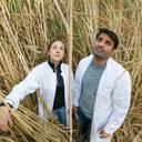 Industriepflanzen machen unproduktives Ackerland rentabel