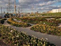 Bundespräsident Steinmeier eröffnet Bundesgartenschau Heilbronn auf dem Experimenta-Platz