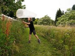 Auch Grünland braucht blühende Randstreifen für Artenschutz
