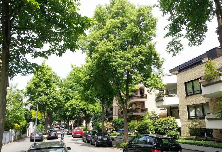 Die Zeit nach Corona kommt: Mit dem Garten- und Landschaftsbau NRW in die Zukunft