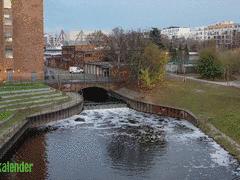 Flusswandern im Wedding - 9. Folge der Videoserie «Wildes Berlin» online: Immer entlang der Panke