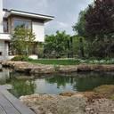 Elegantes Understatement im eigenen Garten: Naturnahe Schwimmteiche liegen im Trend