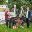 """Hecken pflanzen leicht gemacht – der neue """"Heckennavigator"""" macht es online möglich"""