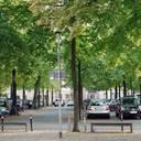 Städtisches Grün