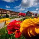 Erfurt – ein BUGA-Sommermärchen