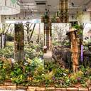 Biodiversität auf Friedhöfen