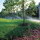 Bewässerungssysteme im Garten