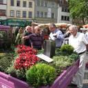 Präsentationen auf Blumen- und Gartenmärkten