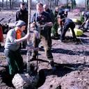 Baumpark gepflanzt
