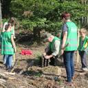 Heidelberg pflanzt den Wald der Zukunft