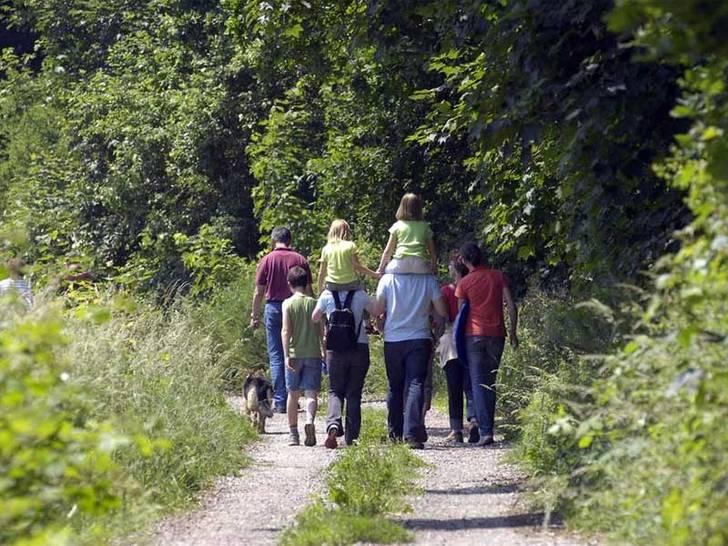 Wanderaktionen für die biologische Vielfalt - Veranstalter für Wanderungen vor Ort gesucht!
