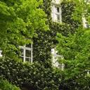 Nordrhein-Westfalen startet neue Klima-Initiative zur Hausbegrünung