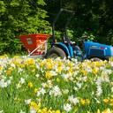 Verver-Blumenzwiebeln-Pflanzmaschine