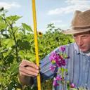Bundeskabinett unterstreicht Fortschritte im Bereich Bioökonomie
