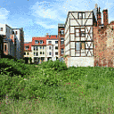 Stadtnatur: Kleine Eingriffe mit großer Wirkung