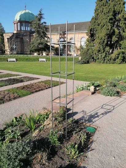 Alte Rosen und bequeme Bänke: Veränderungen im Botanischen Garten Karlsruhe