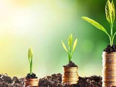 Startschuss für den Wettbewerb zum Deutschen Innovationspreis für Klima und Umwelt 2022