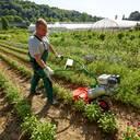 Garten- und Gemüsebau