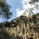 Wildnisprojekt im Thüringer Schiefergebirge eingeweiht