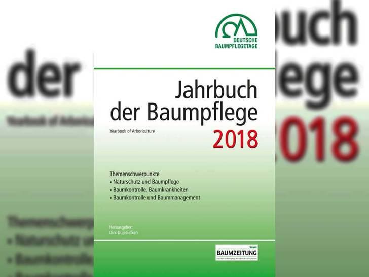 Baumpflege 2018