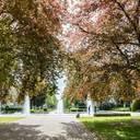 """BdB lädt zum nächsten Seminar im Rahmen von """"Grüne Städte für ein nachhaltiges Europa"""" ein"""