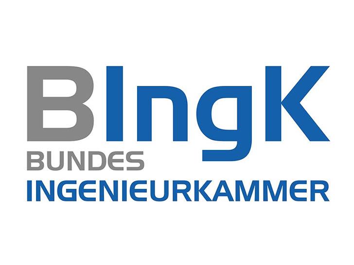 BIngK Logo