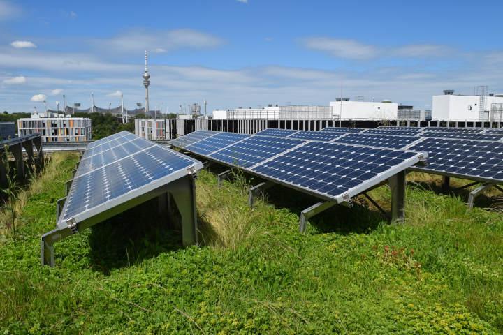 Bedeutung von grüner Infrastruktur