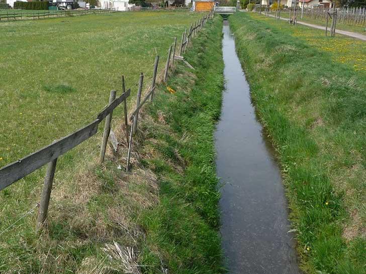 Fließgewässer (Foto: Immanuel Giel [CC BY 3.0])