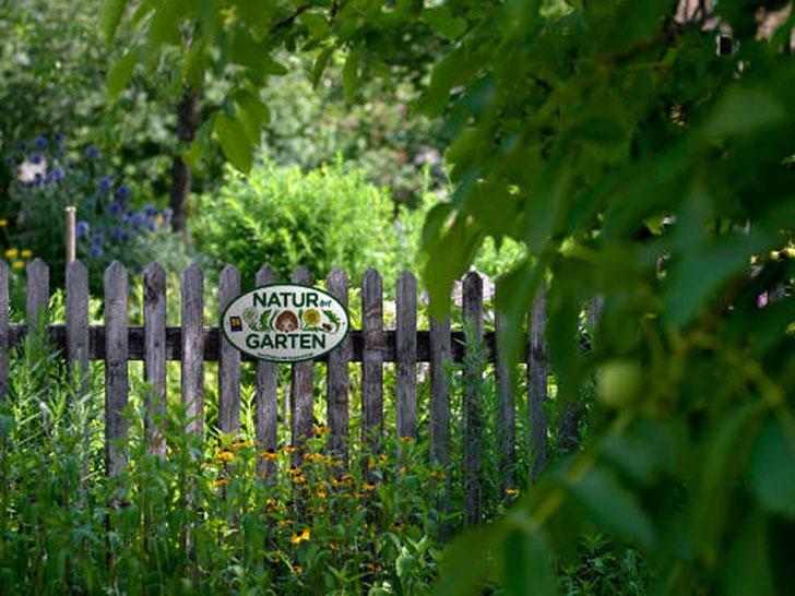 Natur im Garten Tag