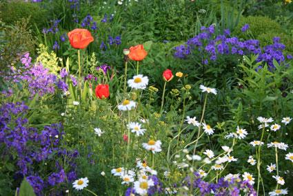 Die Offene Gartenpforte
