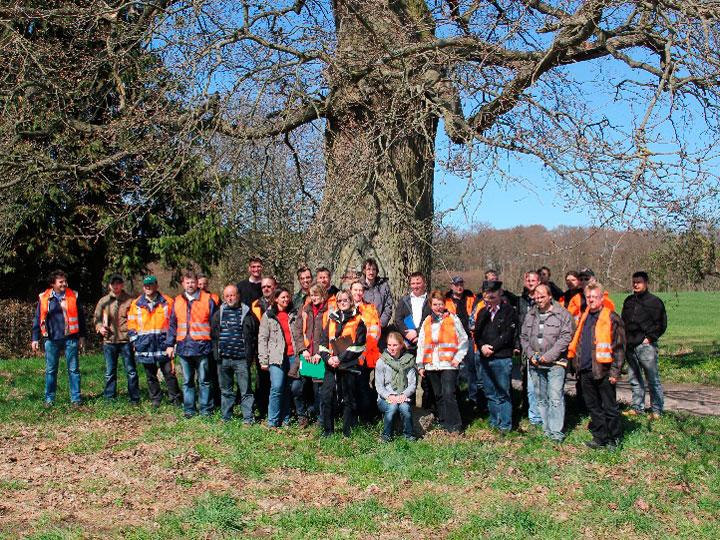 Baumpflege und Baumkontrolle