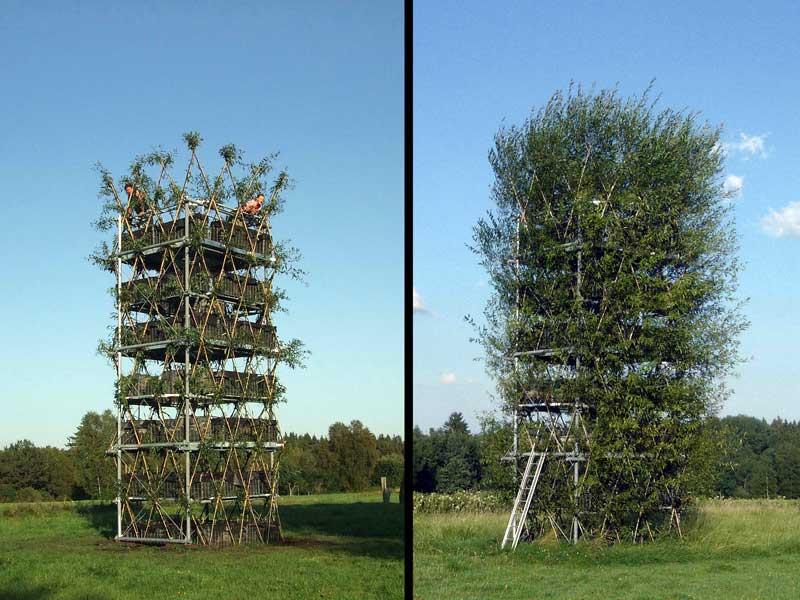 Baubotanischer Turm Erh Lt Preis Als Ausgew Hlter Ort Von
