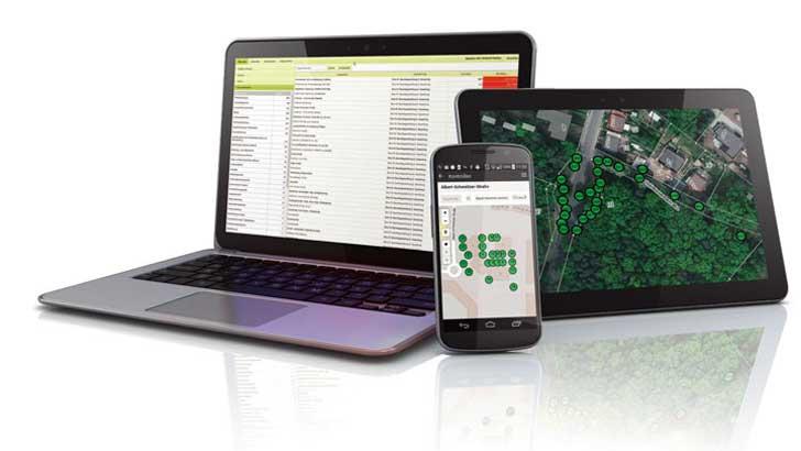 Digitalisierung im Baumpflegemanagement